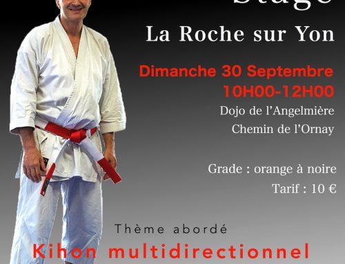 Stage avec Hervé RAYMOND 6e Dan le 30 septembre 2018 à La Roche Sur Yon