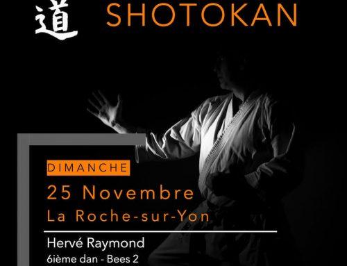 Stage avec Hervé RAYMOND 6e dan le 25 novembre 2018 à La Roche sur Yon