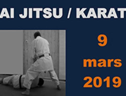 Rencontre Karaté et Taï Jitsu le 9 mars 2019