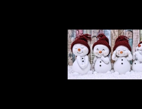 Les membres du Bureau et les professeurs vous souhaitent de très belles fêtes de fin d'année – Prenez soin de vous